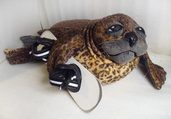 тюлень сноубордист