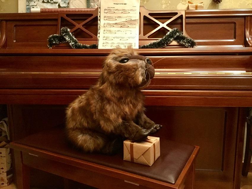 Capybara otziv