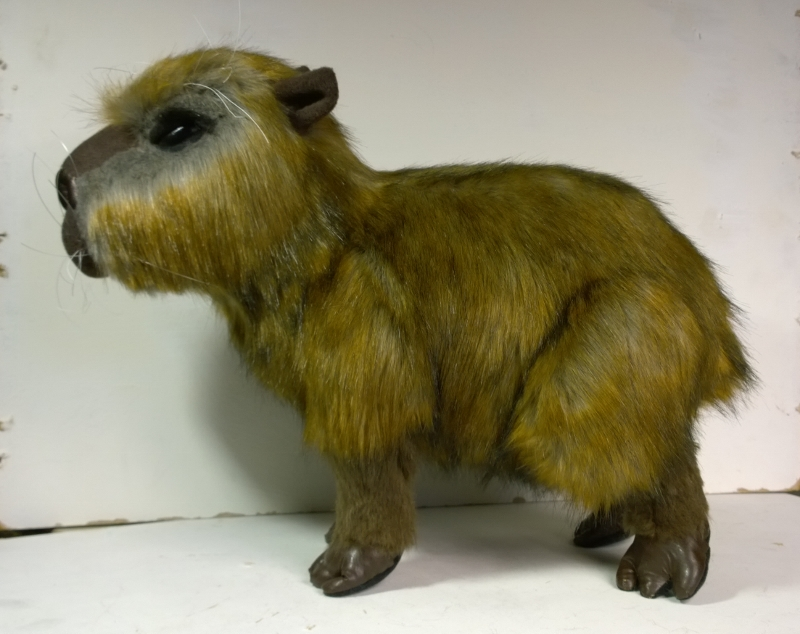 Capybara plush 1
