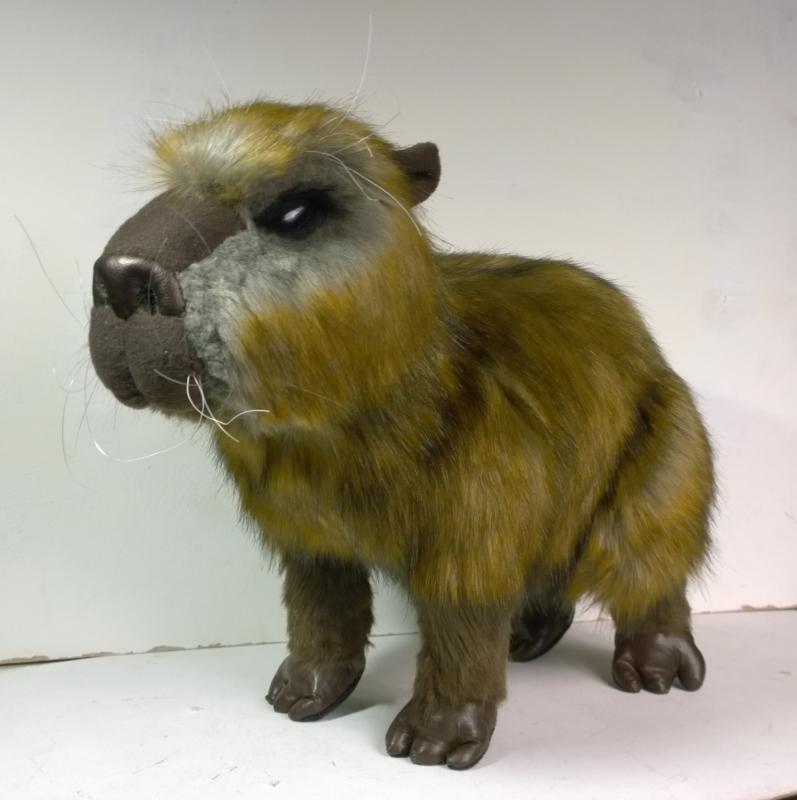 Capybara plush 2