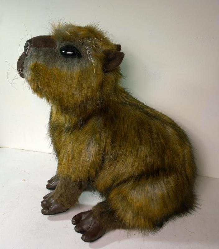 Capybara plush 3