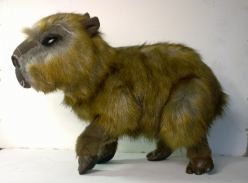 Capybara plush 4